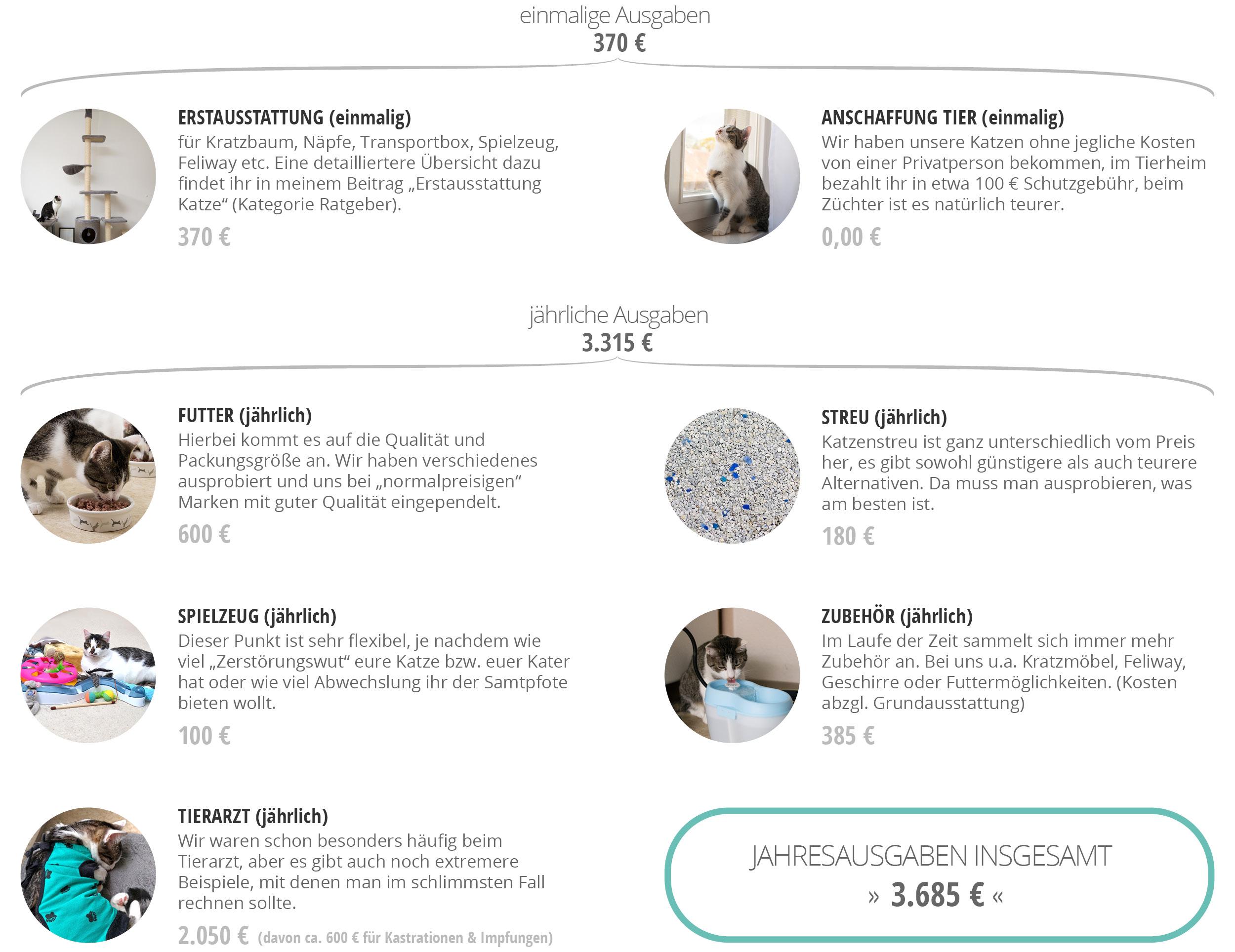 Fensterkatzen-Ratgeber-Wie-viel-kostet-eine-Katze-Grafik-Jahresbilanz
