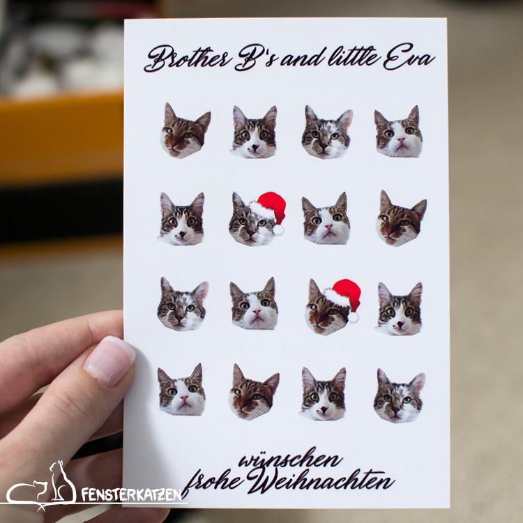 Fensterkatzen_Alltag_Tauschpaket-Brother-Bs-and-little-Eva_Weihnachtskarte
