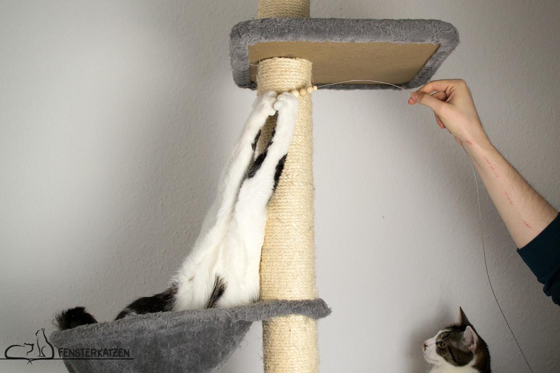 Fensterkatzen_Do-It-Yourself_Catdancer-Original-vs-DIY_Action-05