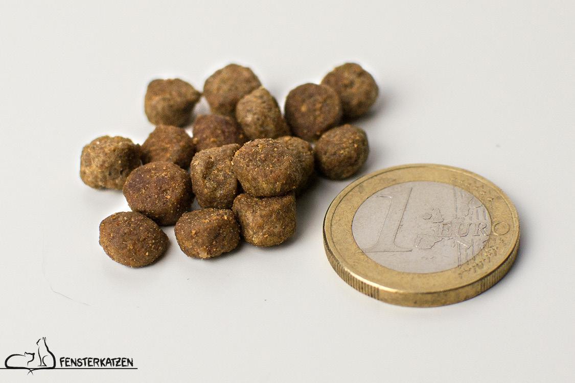 Fensterkatzen_Getestet_Select-Gold-Fressnapf_Trockenfutter