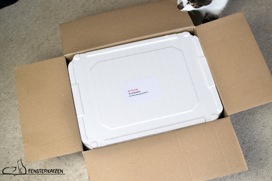Fensterkatzen_Getestet_Fix-Barf-eBarf-K+K-Petfood-GmbH_Styropor-Kältekarton