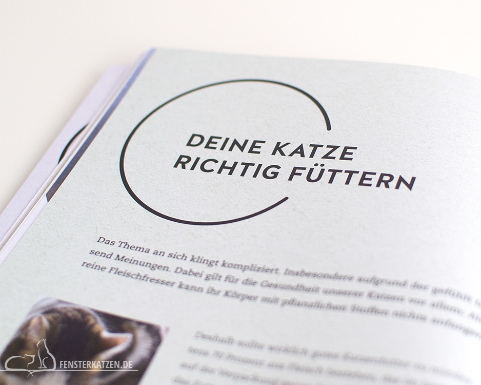Fensterkatzen_Do-It-Yourself_Buch-Lifehacks-Katze_Deine-Katze-Richtig-Füttern