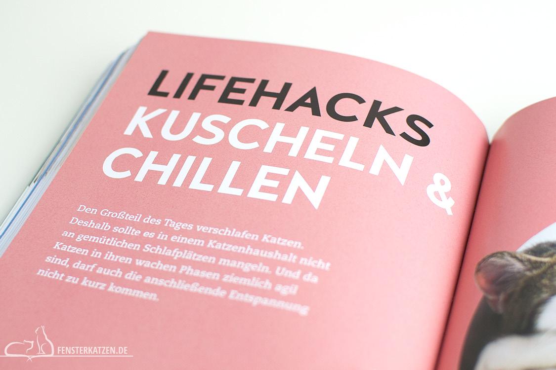 Fensterkatzen_Do-It-Yourself_Buch-Lifehacks-Katze_Kuscheln-und-Chillen