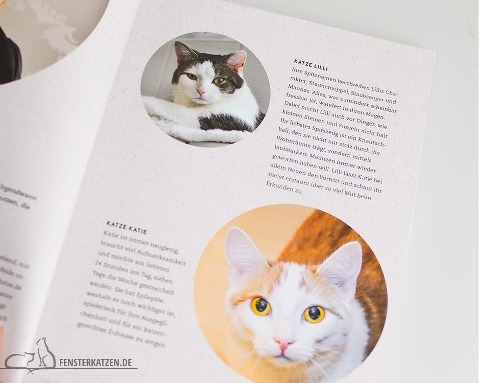 Fensterkatzen_Do-It-Yourself_Buch-Lifehacks-Katze_Profile