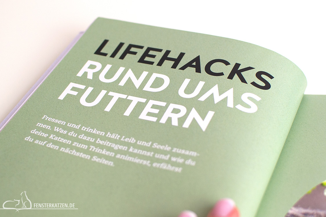 Fensterkatzen_Do-It-Yourself_Buch-Lifehacks-Katze_Rund-Ums-Futtern