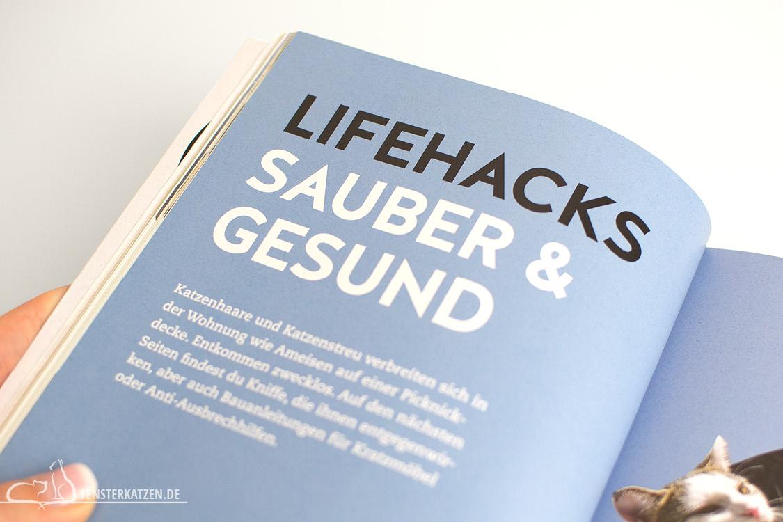 Fensterkatzen_Do-It-Yourself_Buch-Lifehacks-Katze_Sauber-und-Gesund