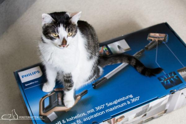 Fensterkatzen-Getestet-Akku-Staubsauger-SpeedPro-Max-Philips-Flash-Karton