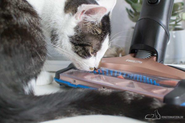 Fensterkatzen-Getestet-Akku-Staubsauger-SpeedPro-Max-Philips-Titelbild-2