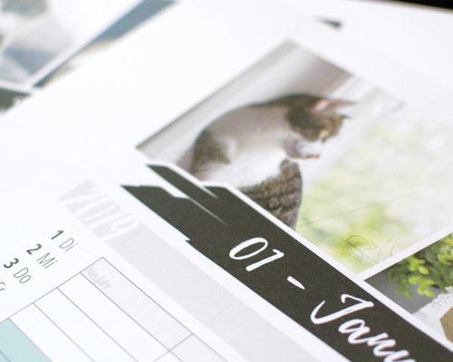 Fensterkatzen-Kalender-2019-Familienplaner-Detail-1