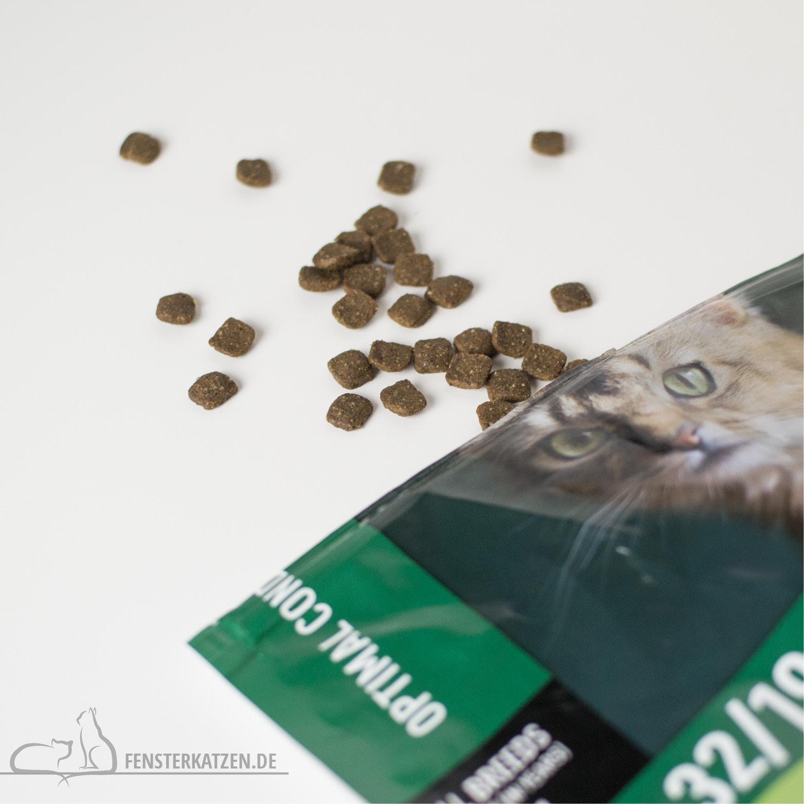 Fensterkatzen-Getestet-Goodie-Box-Zookauf-Shop-Trockenfutter-Groesse
