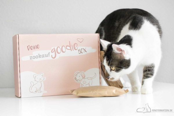 Goodiebox » zookauf-Shop