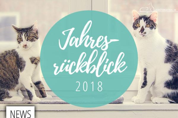Fensterkatzen-News-Jahresrueckblick-2018-TItelbild
