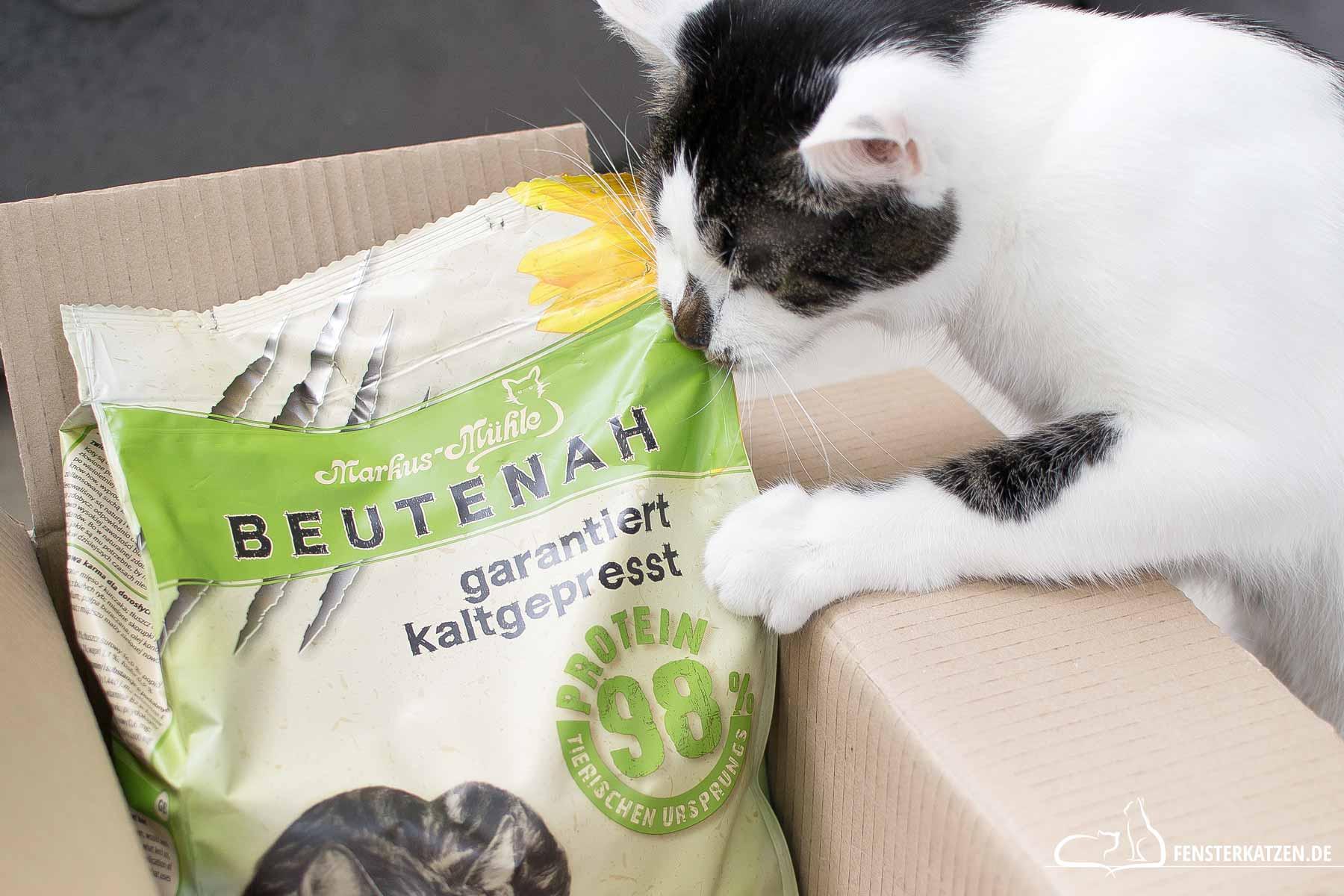 Fensterkatzen-Getestet-Katzenfutter-Beutenah-Trockenfutter-Markus-Muehle-Titelbild