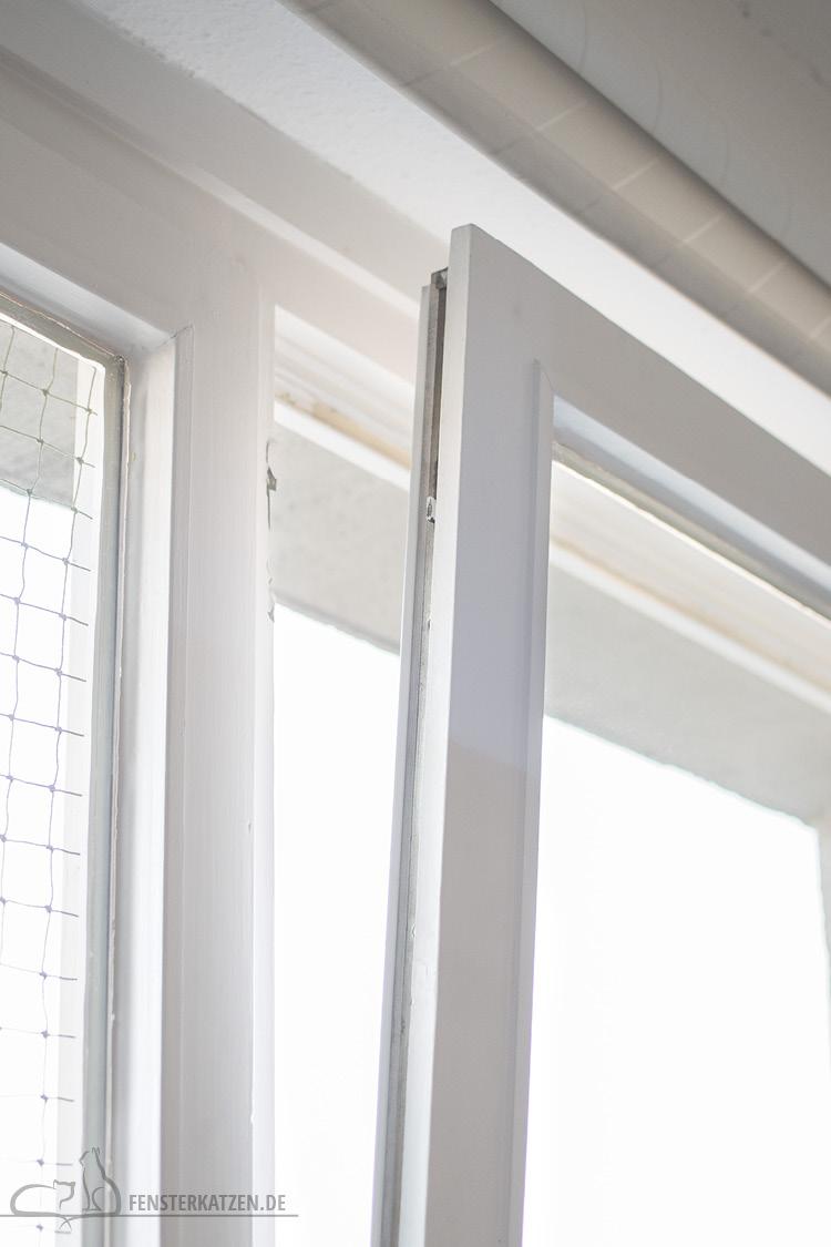 Fensterkatzen-Ratgeber-Katzensichere-Wohnung-Was-Muss-Ich-Beachten-Kippfenster