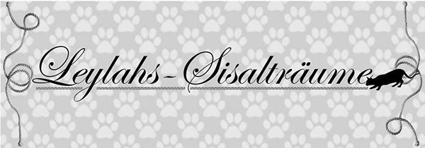 Leylahs-Sisaltraeume-Logo-sw
