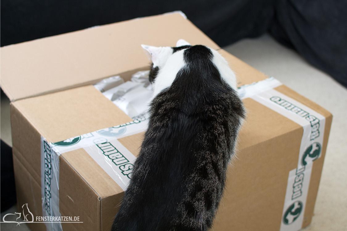 Fensterkatzen_Getestet_Catz-Finefood-Pets-Nature_Flash-am-Karton