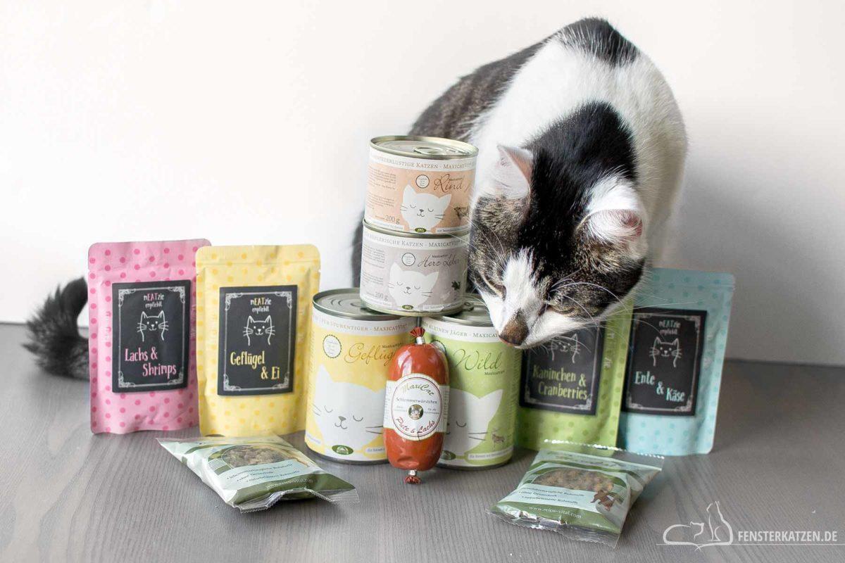 Fensterkatzen-Getestet-Katzenfutter-Trockenfutter-Leckerlis-Reico-Titelbild
