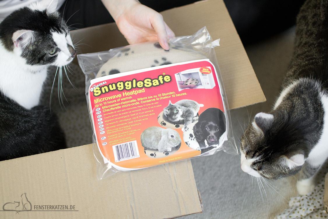 Fensterkatzen-Alltag-Tauschpaket-Blogkatzen-05