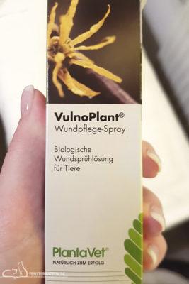 Fensterkatzen-Alltag-Nalas-Rolligkeit-Kastrations-Dilemma-Teil-4-Medikament-Vulno-Plant