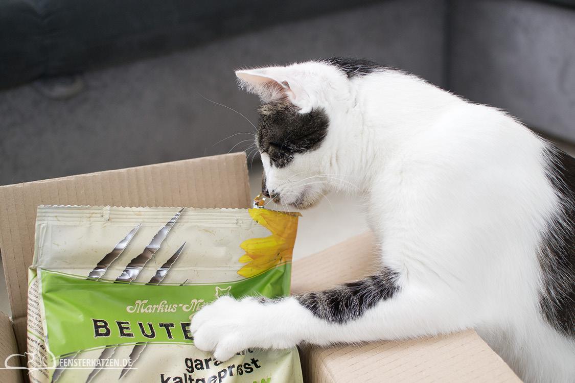 Fensterkatzen-Getestet-Beutenah-Trockenfutter-Markus-Muehle-Krallen