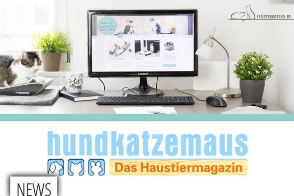 Fensterkatzen-News-Fensterkatzen-trifft-auf-hundkatzemaus-Titelbild