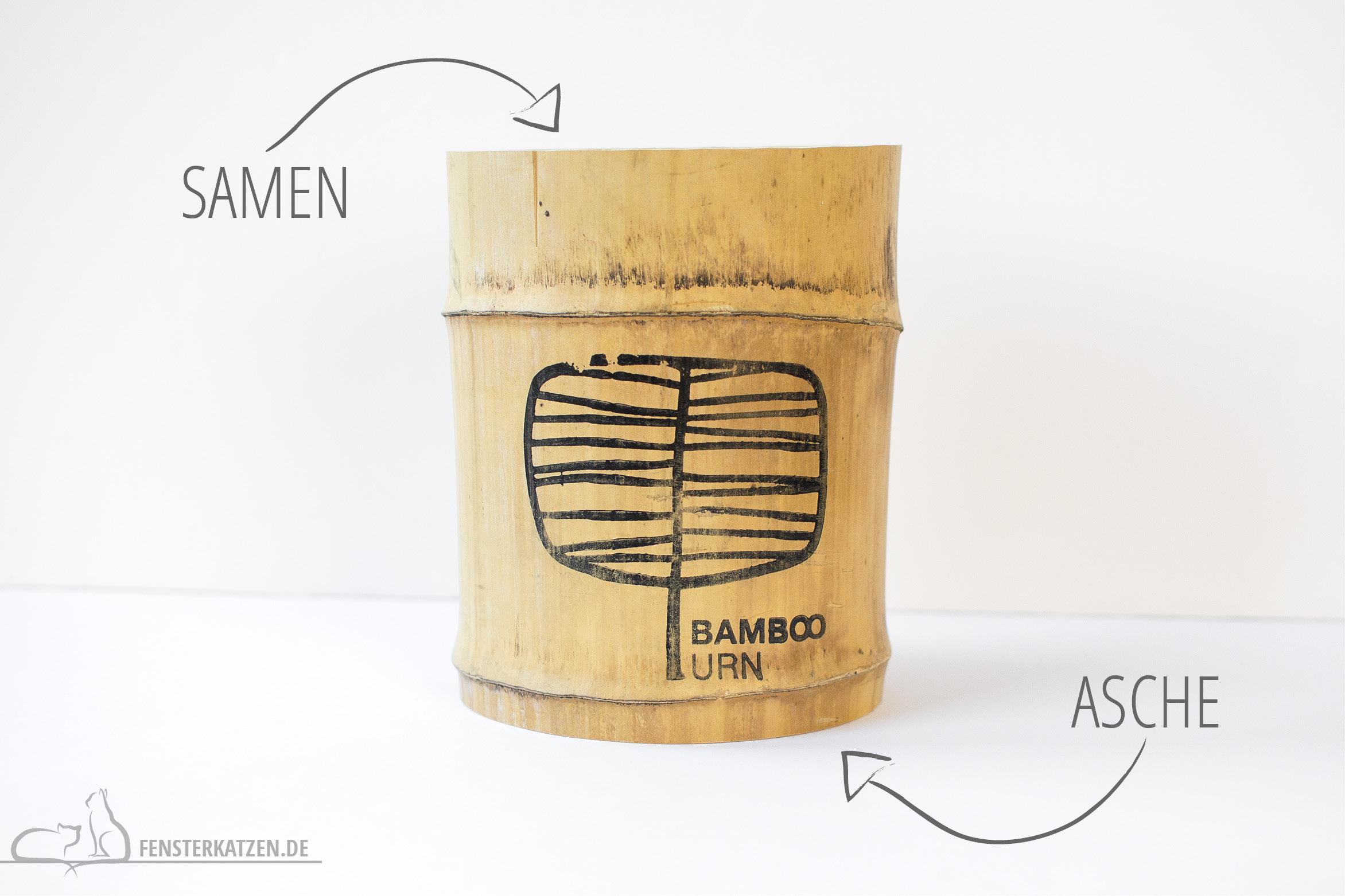 Fensterkatzen-Ratgeber-Katze-stirbt-Bamboo-Urn-Anleitung