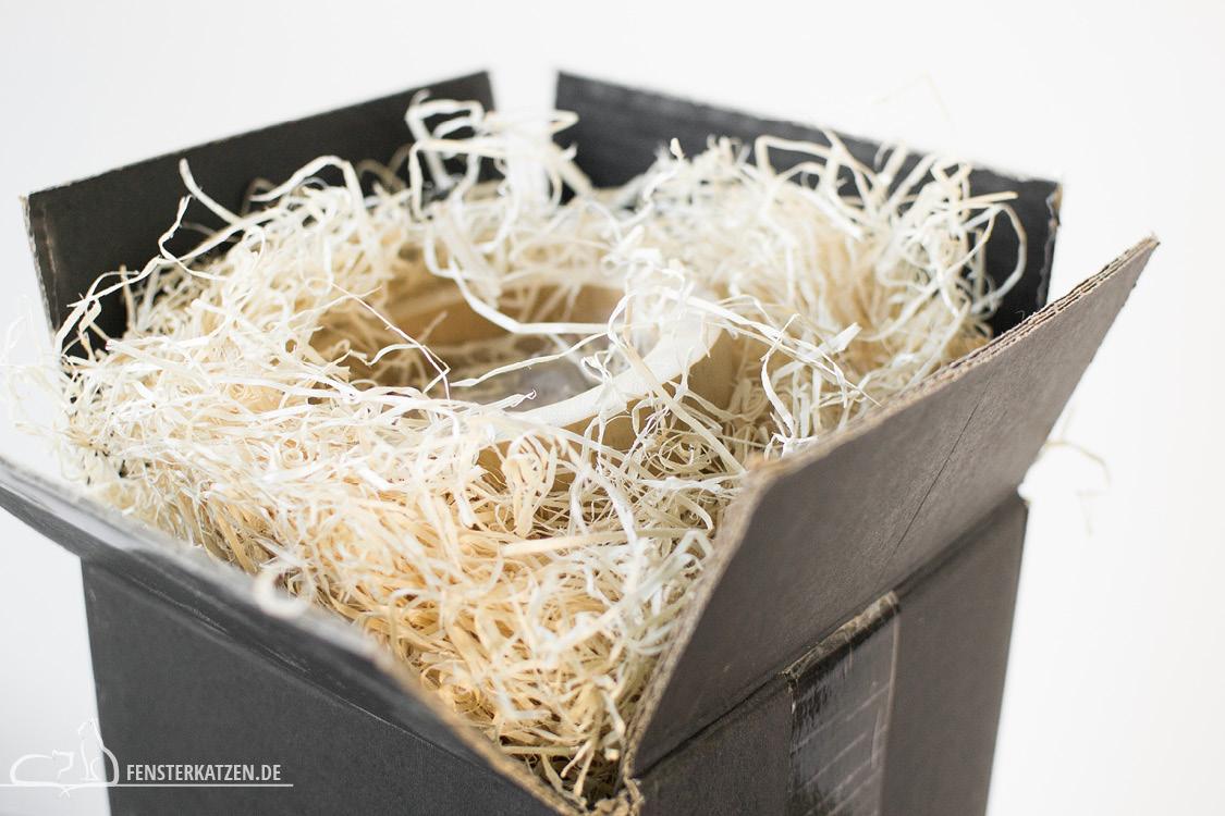 Fensterkatzen-Ratgeber-Katze-stirbt-Urne-Verpackung