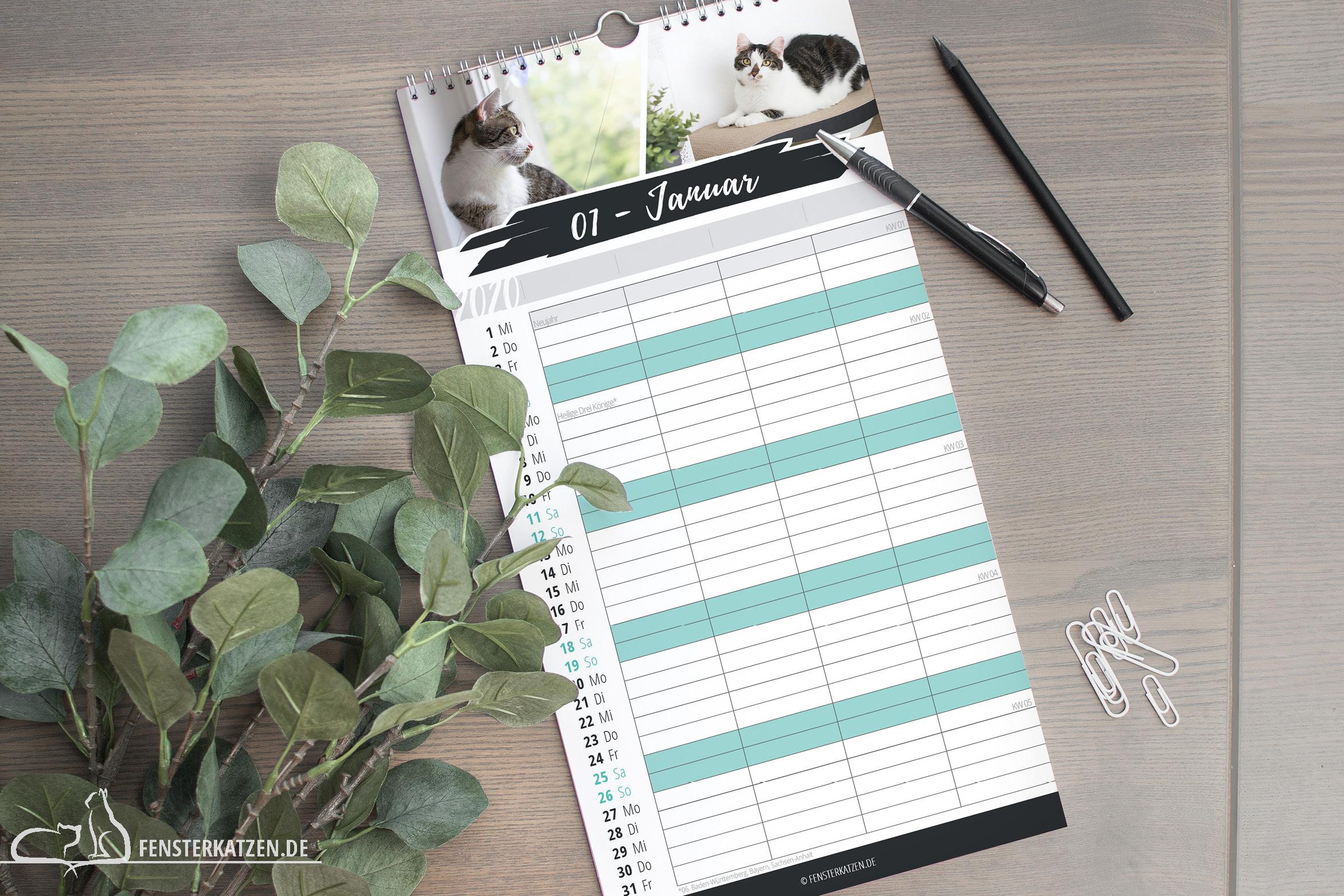Fensterkatzen-News-Kalender-2020-Familienplaner