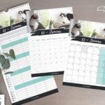 Katzen Kalender 2020