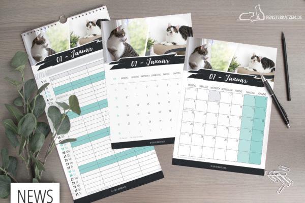 Fensterkatzen-News-Kalender-2020-Titelbild
