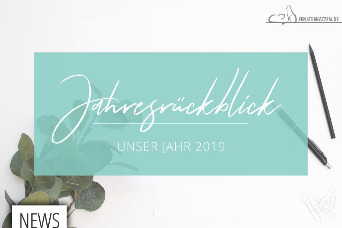 Fensterkatzen-News-Jahresrueckblick-2019-Titelbild