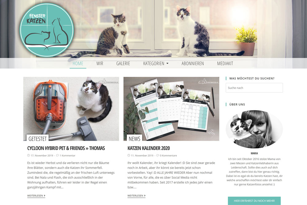 Fensterkatzen-Vergleich-Startseite-Header-Alt