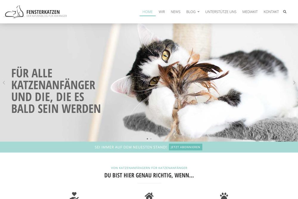 Fensterkatzen-Vergleich-Startseite-Header-Neu