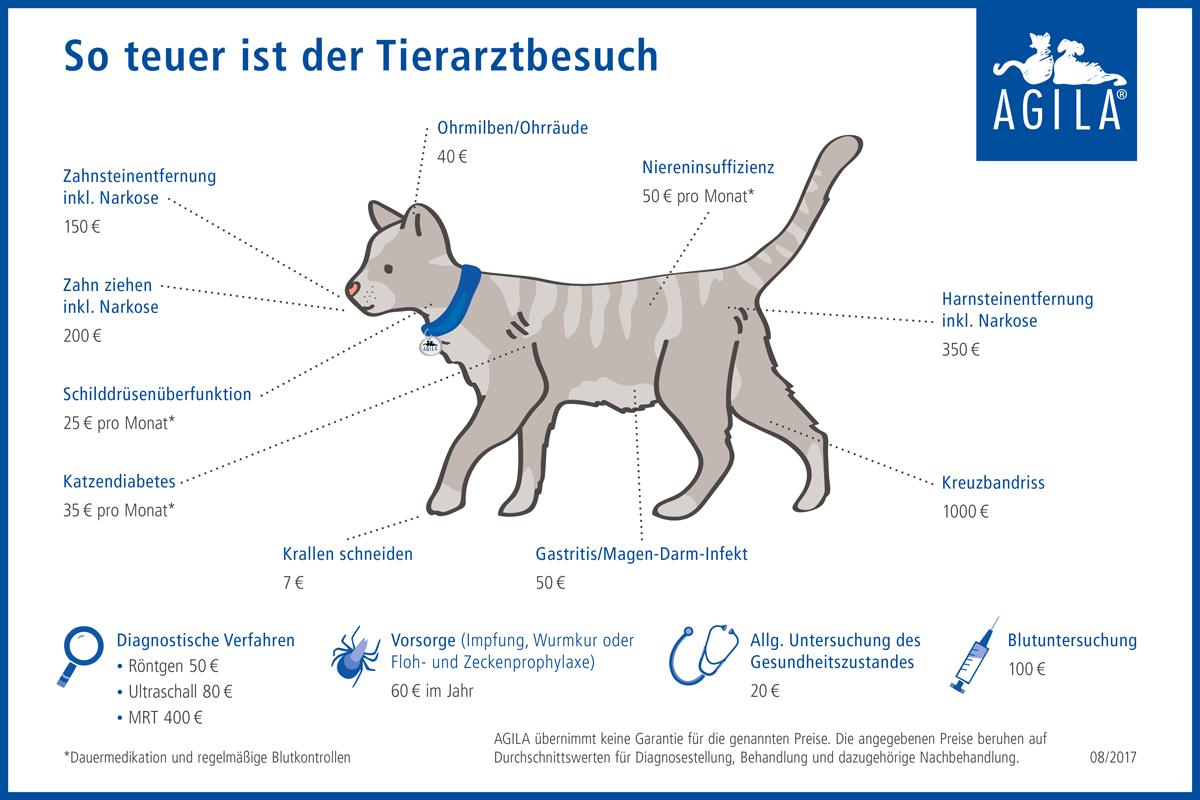 AGILA-Schaubild-Kosten-Tierarzt-Katze