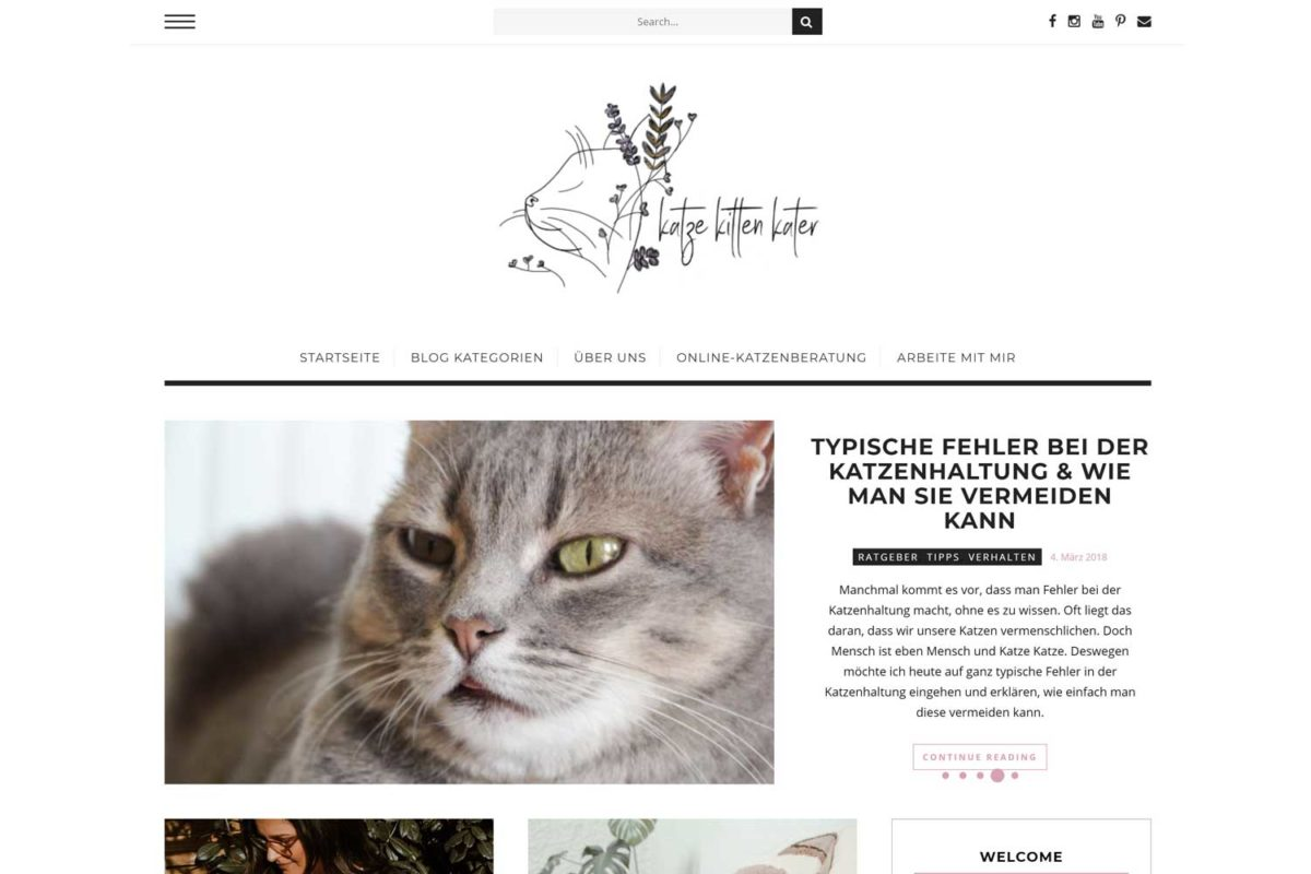 Empfehlung-Katzenblog-KatzeKittenKater