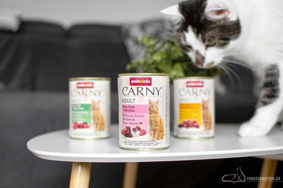 Fensterkatzen-Ratgeber-Animonda-Carny-Adult-Sorten