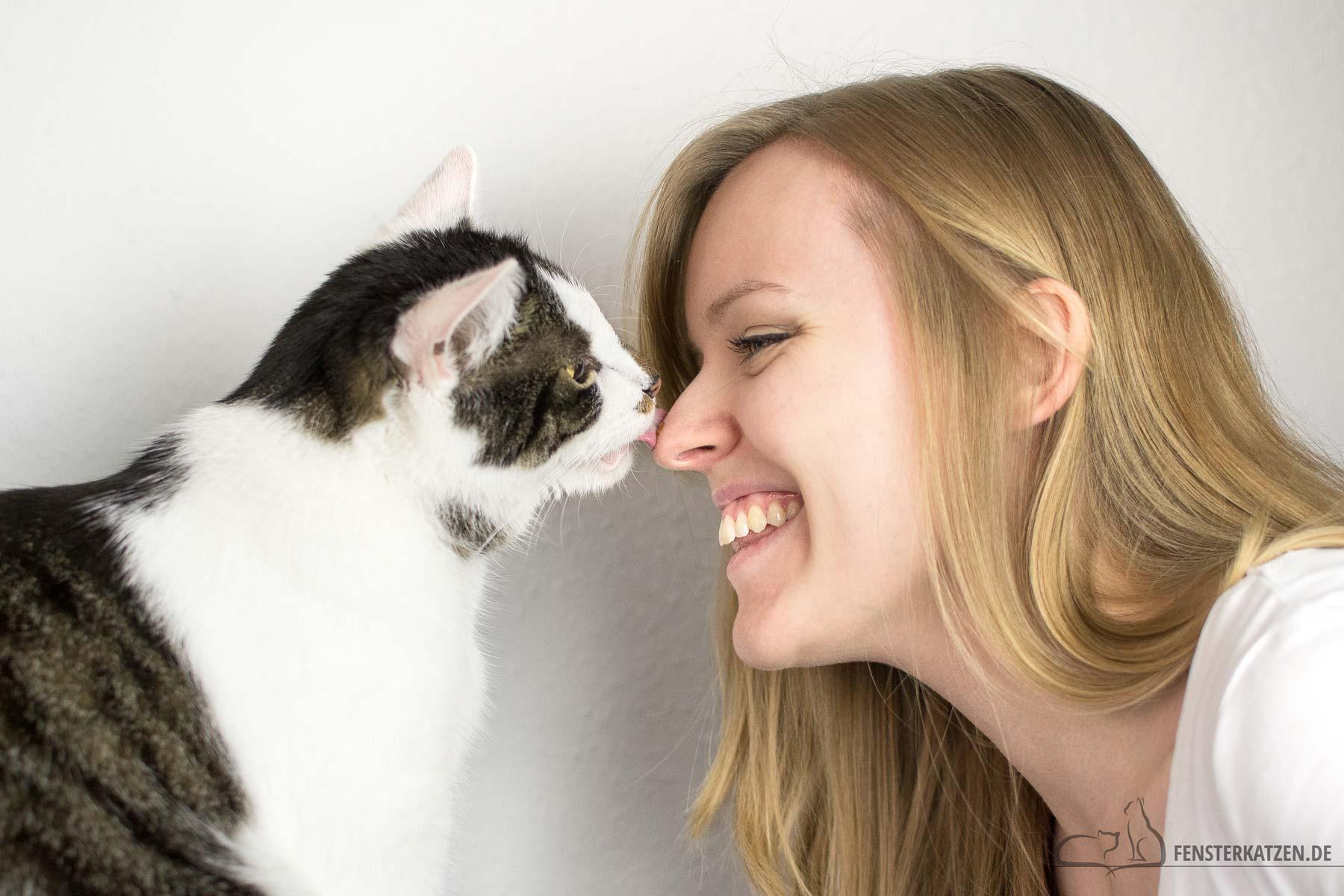 Fensterkatzen-Ratgeber-13-Tipps-harmonische-Katze-Mensch-Beziehung-Titelbild
